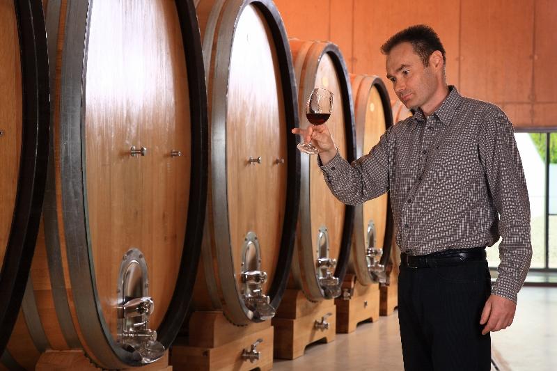 Slovenian winemaker Sašo Topolšek