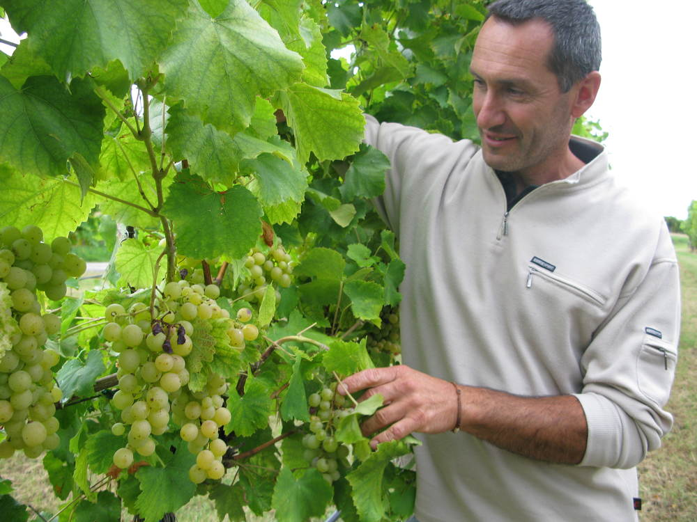 Winemaker Mauro Altini