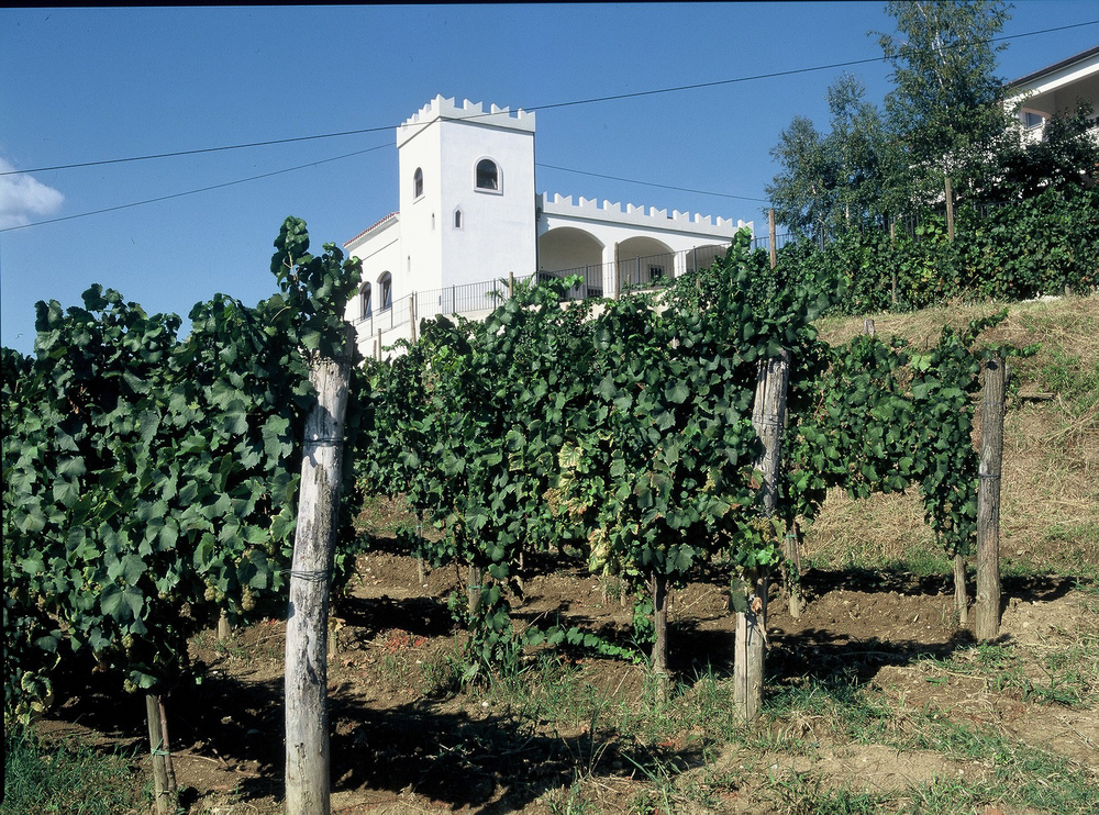 The Simčič winery