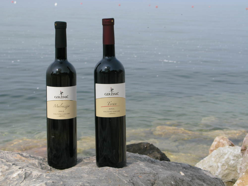 Gerzinic wines 2.JPG
