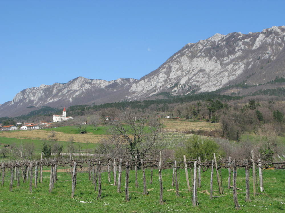 The Vipava Valley: One of the many highlights of this tour