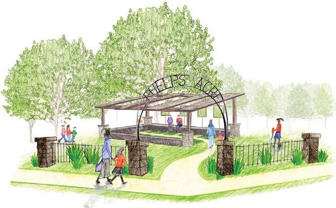 Phelps Acre Concept
