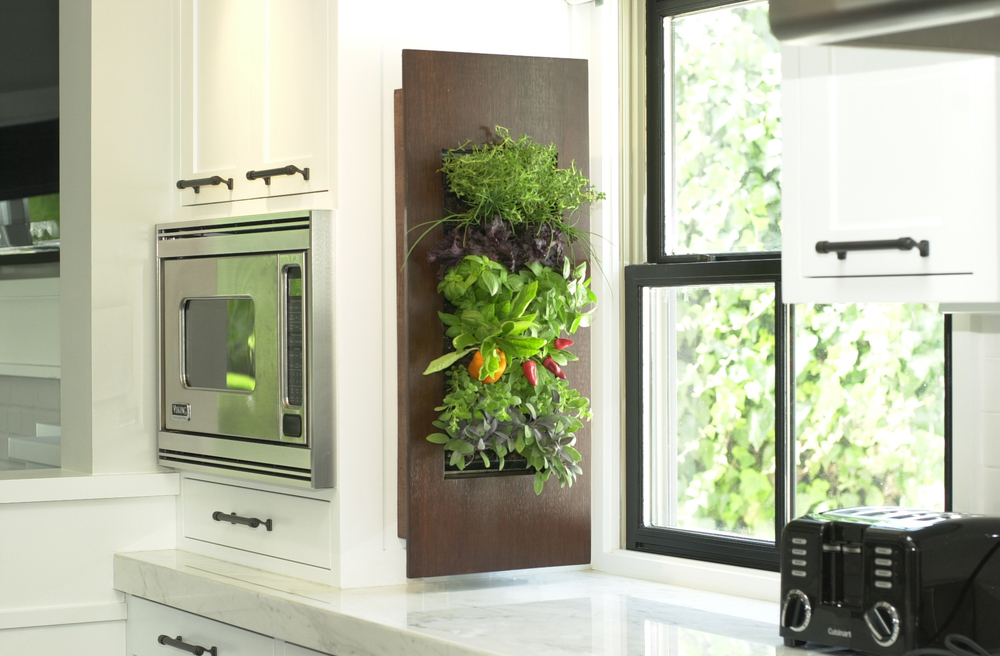 Residential Kitchen Grow Light Herb Garden
