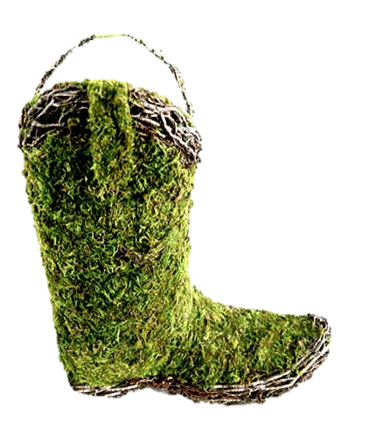 not planted boot.png