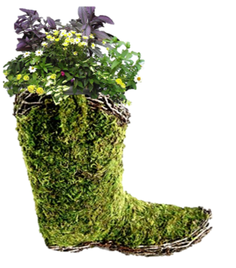planted boot.png