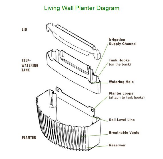 Living Wall Specs