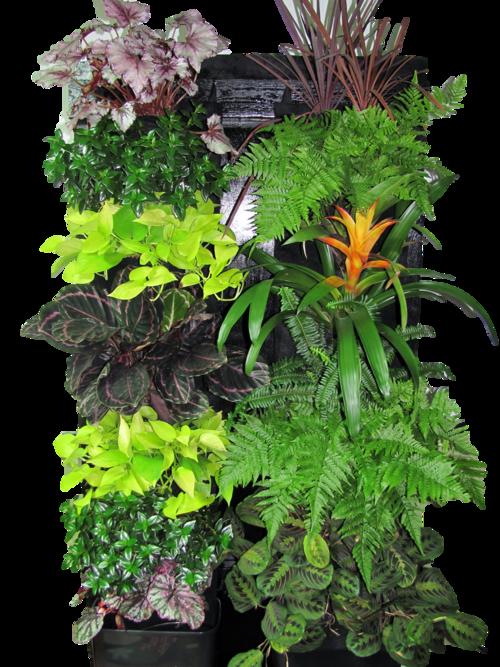 Tropical Vertical Garden Kit — Edible Walls