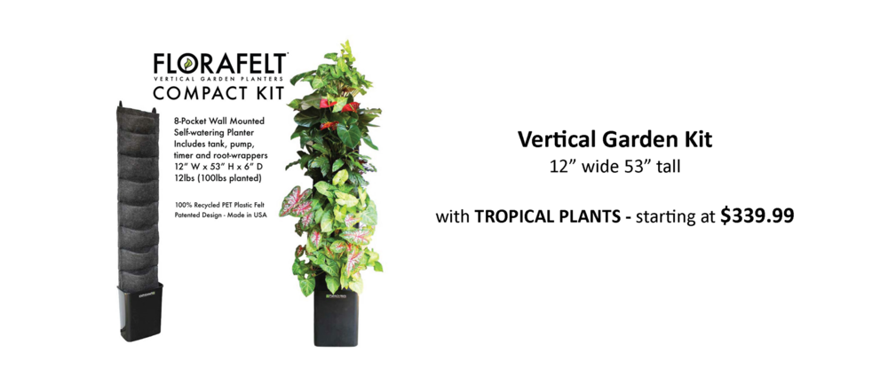 Living Wall Planter For Easy Vertical Gardens Pre Planted With Tropical  Plants For Indoor Or Outdoor