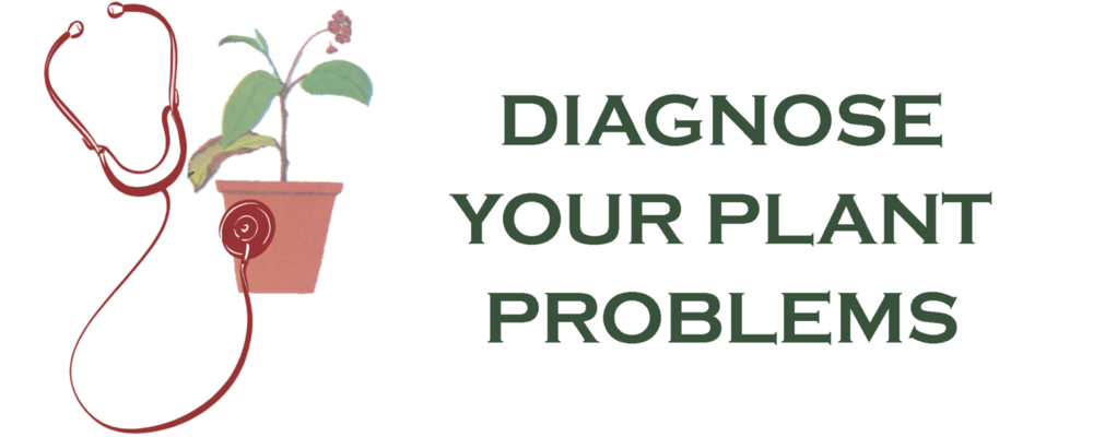Diagnose Plant Problems.png
