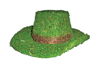 Cowboy Hat Planter.PNG