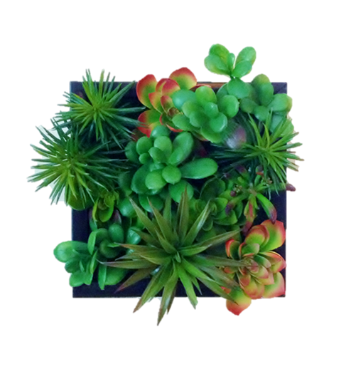 Faux Succulent Living Wall Icon Art Suc