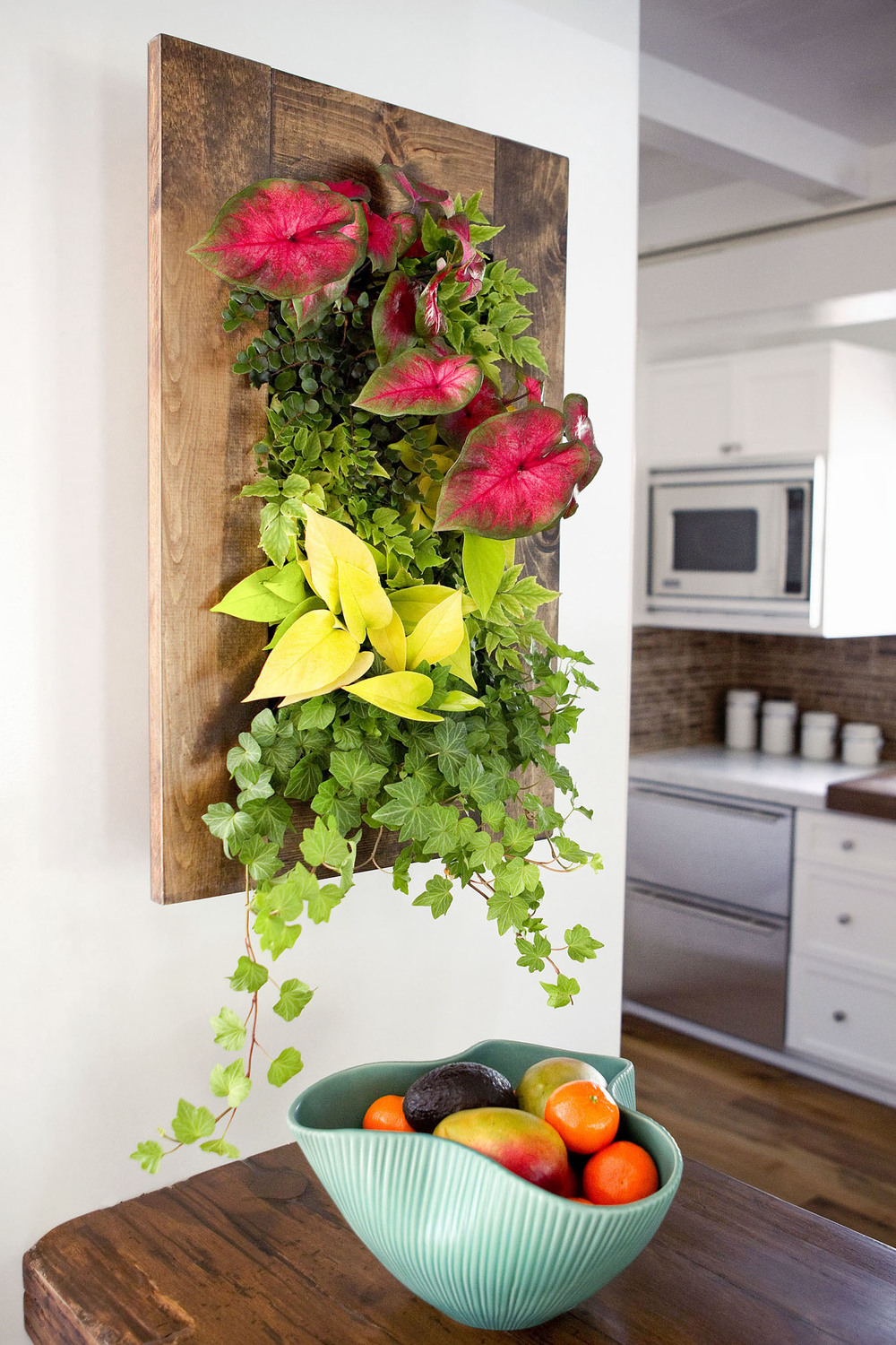 Edible Walls Living Wall Kits