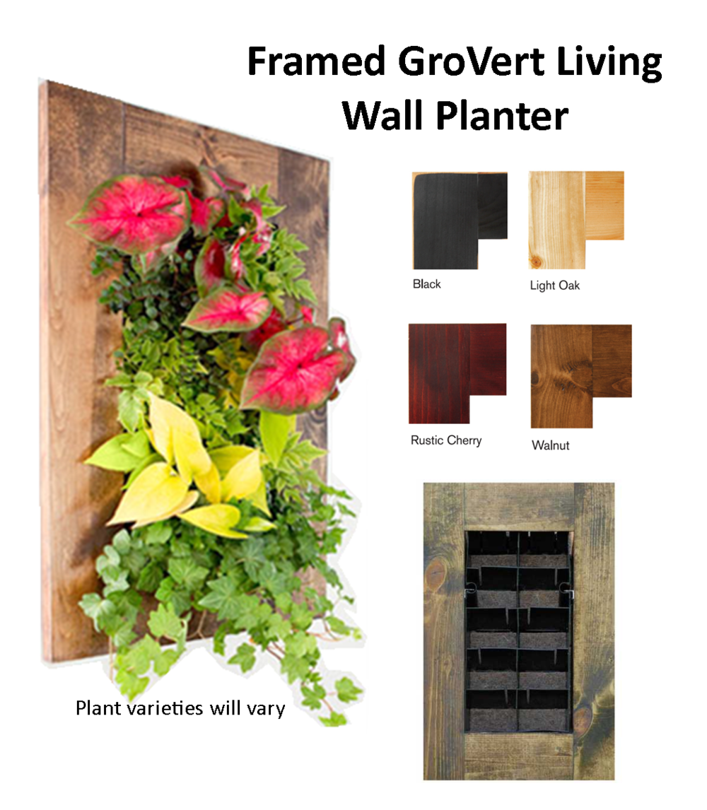 succulent collection framed grovert living wall planter