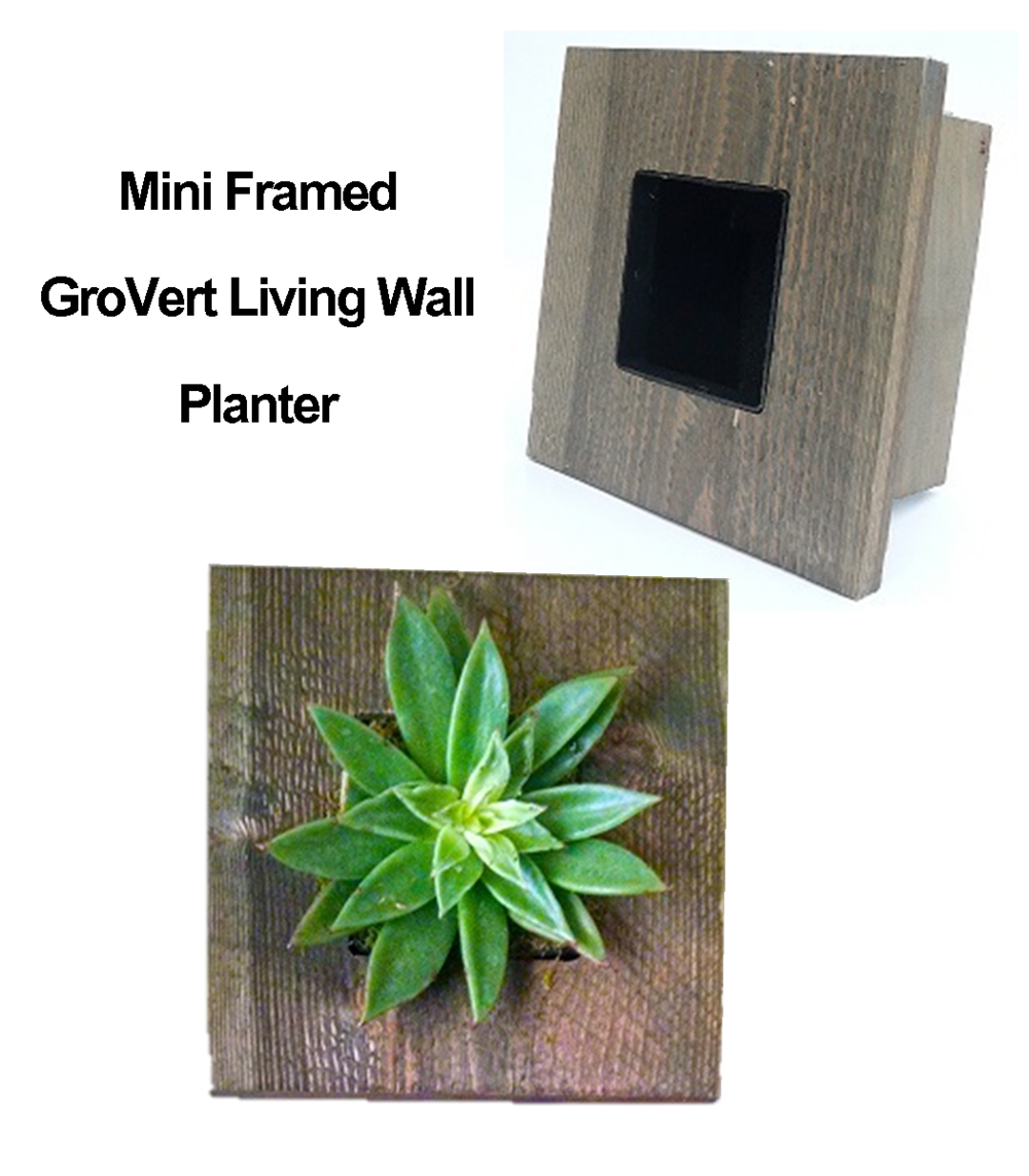Mini Framed GroVert Living Wall Kit   Single