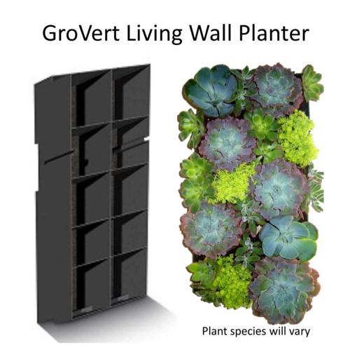 Succulent Collection Grovert Living Wall Planter Edible Walls
