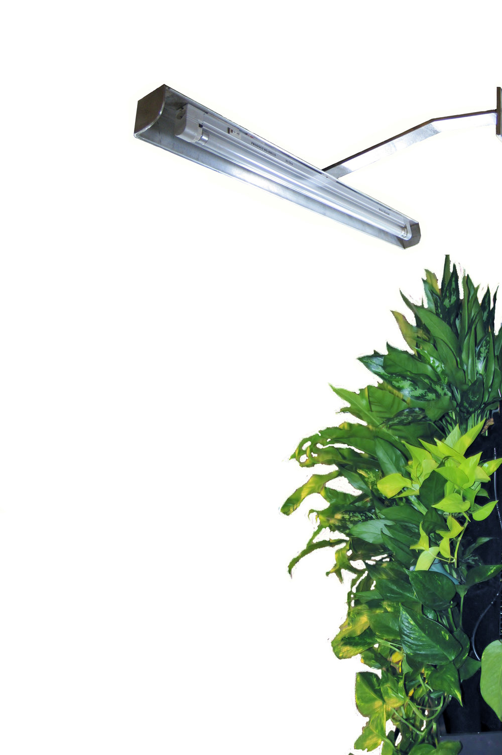 Vertical Garden Light System Edible Walls