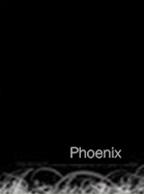 2007 Phoenix