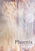 2010 Phoenix
