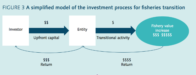 "From ""Towards Investment In Sustainable Fisheries"""