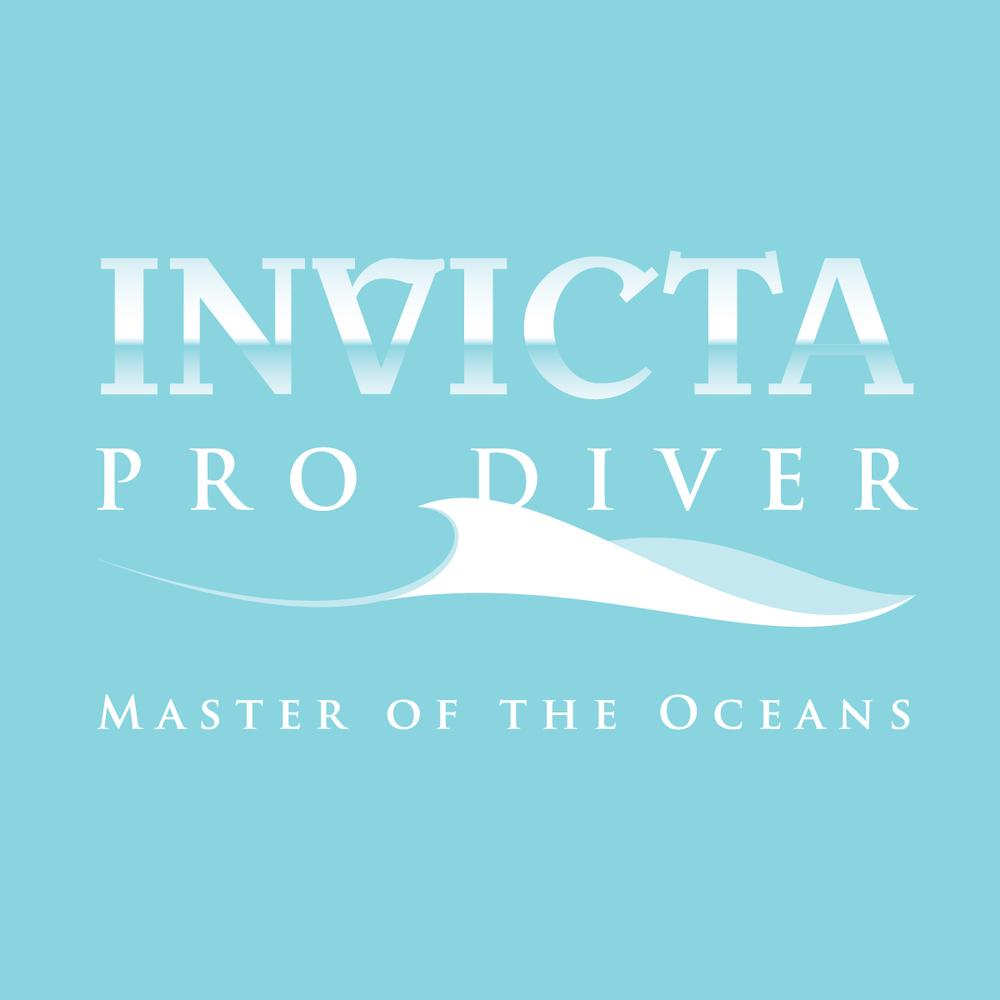 IN-09-ProDiver-Logo-05-MainColors-CMYK.jpg