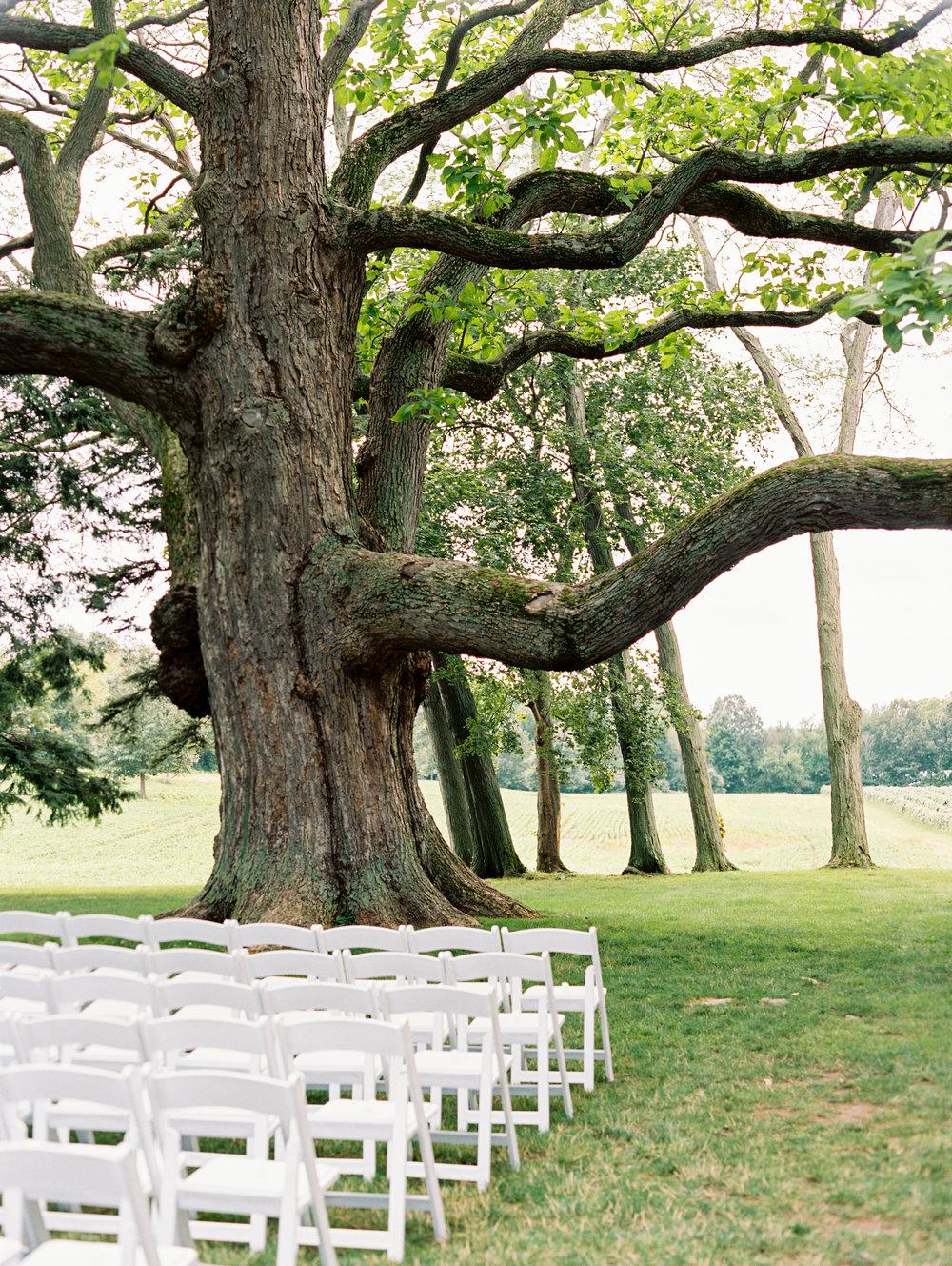 03-Smith-Wedding-Ceremony-012.jpg