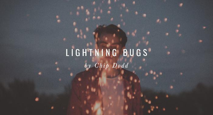SHR_lightningbugs.jpg