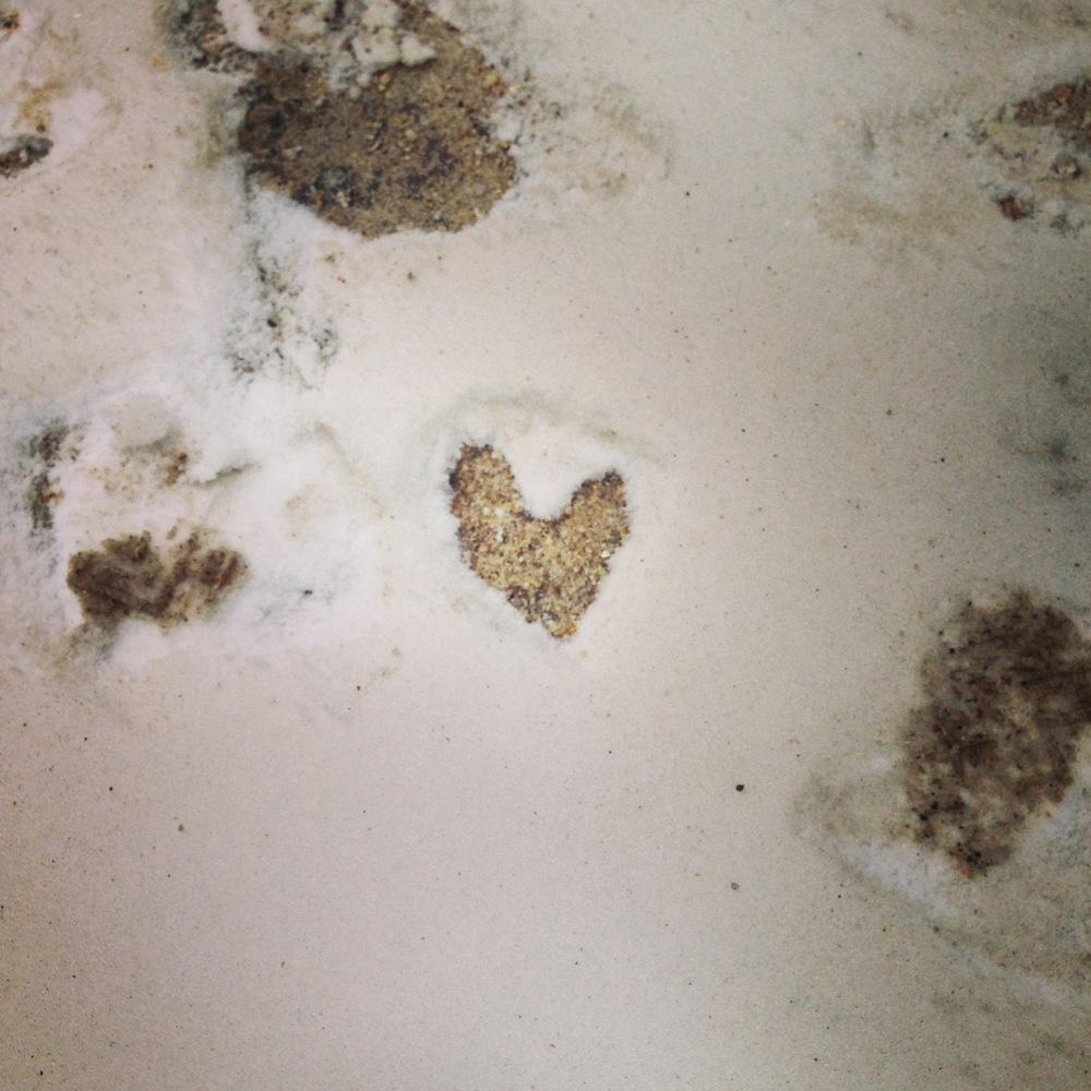 footprintlove.JPG