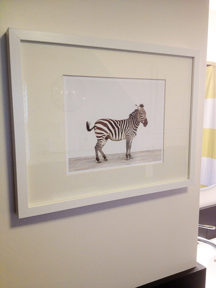 zebra print from Sharon Montrose in an IKEA frame
