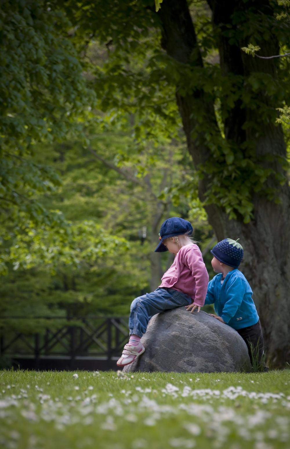 Kids Enjoying the Park