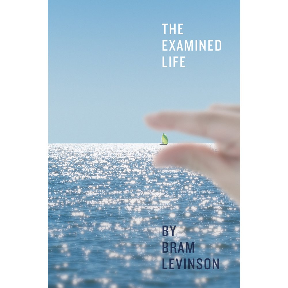 The Examined Life $14.99 + tx