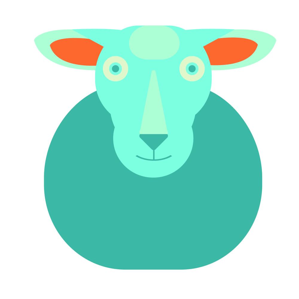 sheep-01.jpg