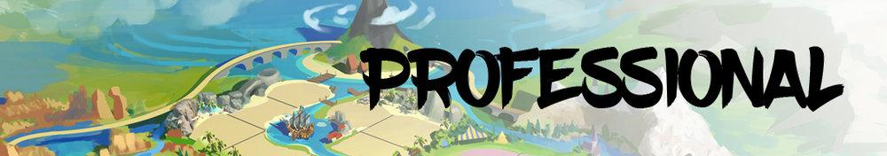 concept_banner_pro.jpg
