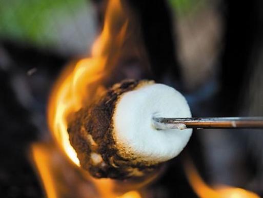 marshmallow roast.jpg