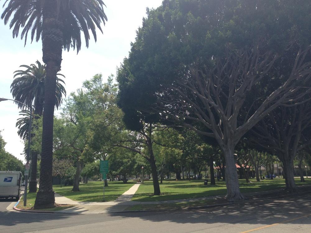 Carlson Park @ Braddock & Motor