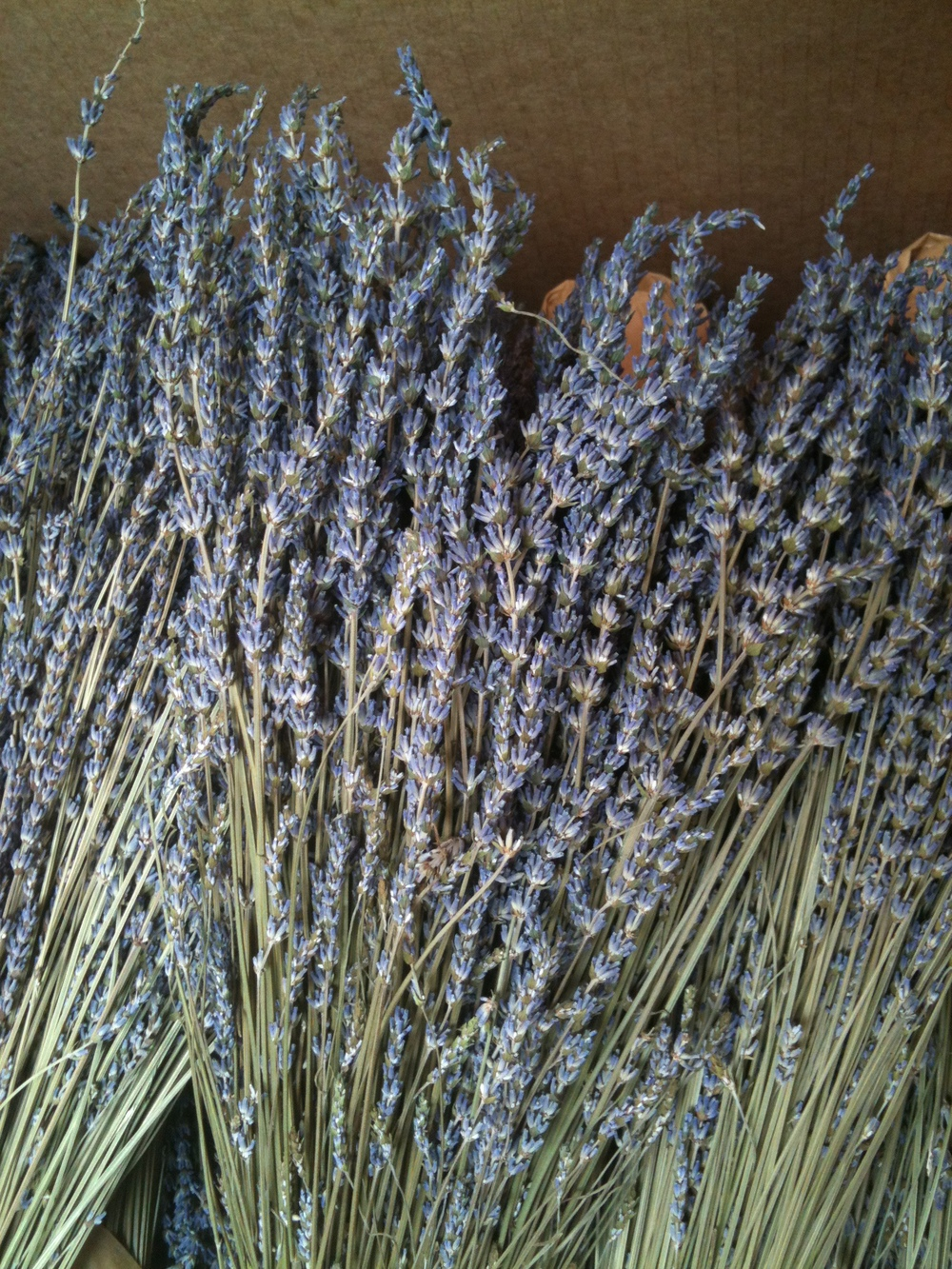 Dried Lavender from the Farmers' Market