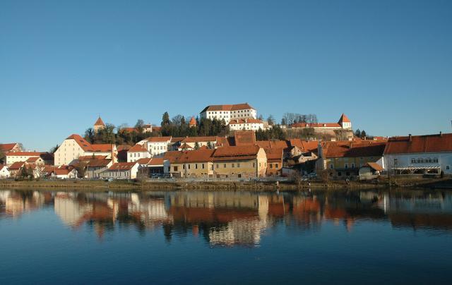 Pullus Pinot Grigio 2012 - Štajerska (Lower Styria)