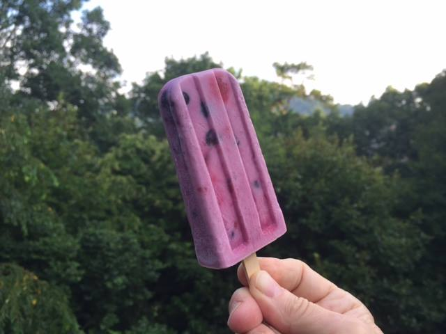blueberry raspberry coconut ice pop