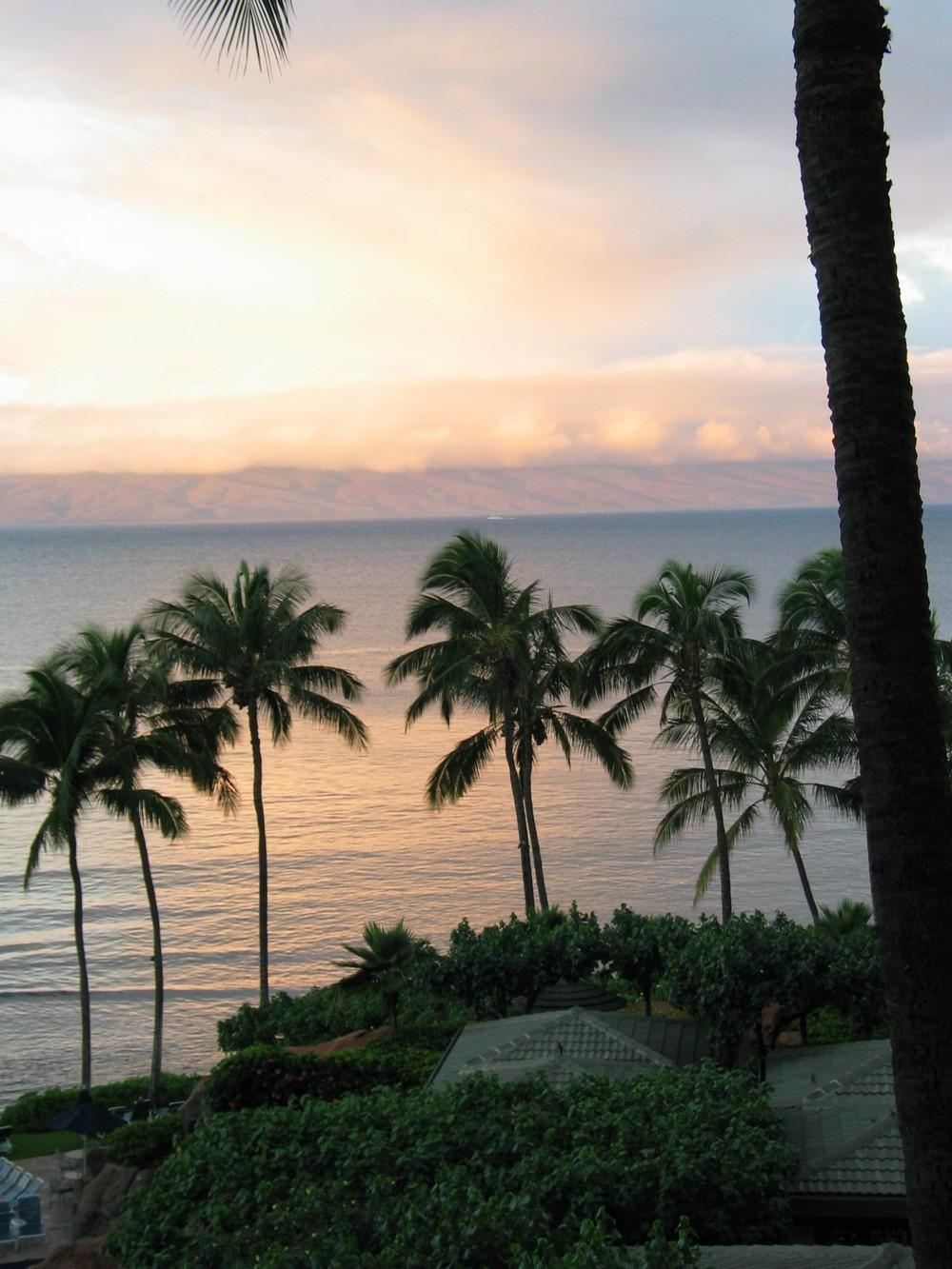 Maui, 2003