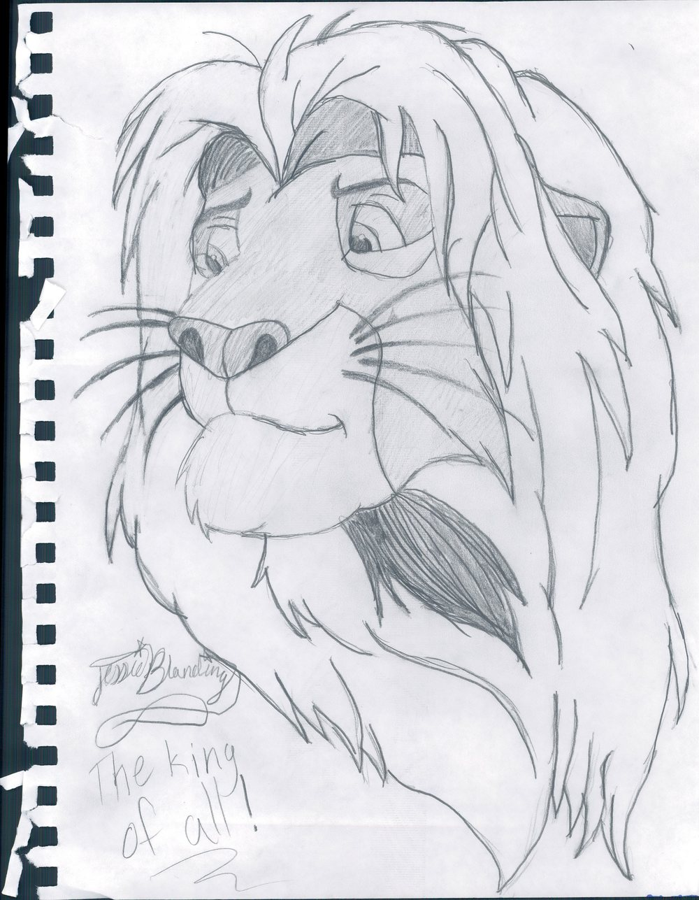 Jessie's Simba