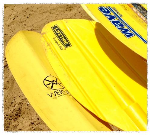 paddles_Fotor.jpg