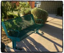 bench_Fotor.jpg