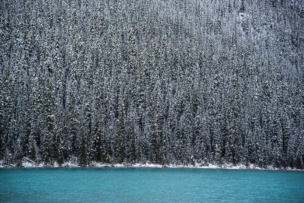 Banff Wedding-135.jpg