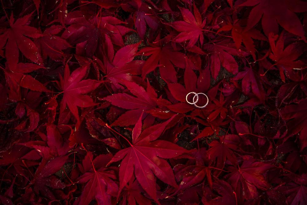 Green Tea Photography-54.jpg