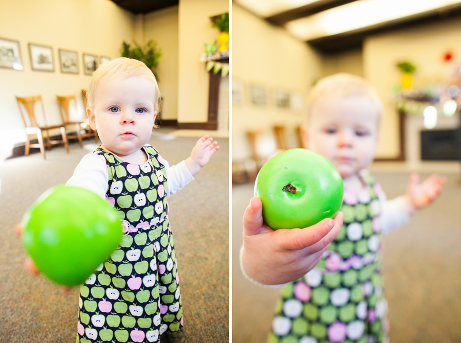 015-apple-of-my-eye-theme-one-year-party-bellingham.jpg