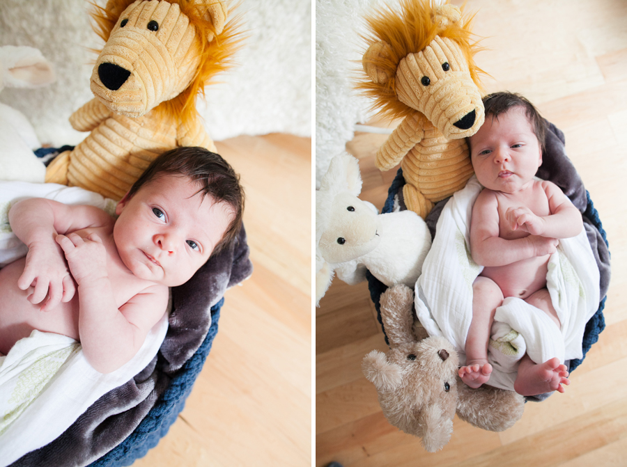 008-bellevue-newborn-photographer-solorio.jpg
