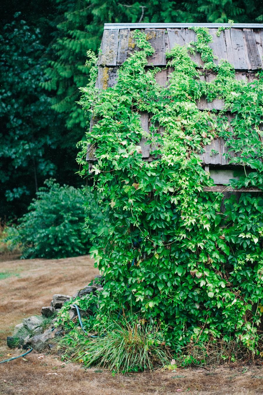 065-bellingham-wedding-photographer-katheryn-moran-photography-farm-kitchen.jpg