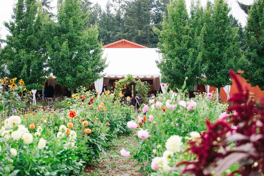 089-bellingham-wedding-photographer-katheryn-moran-photography-farm-kitchen.jpg