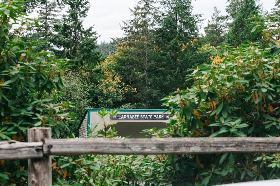 001-bellingham-family-photographer-larrabee-state-park-katheryn-moran-photography.jpg