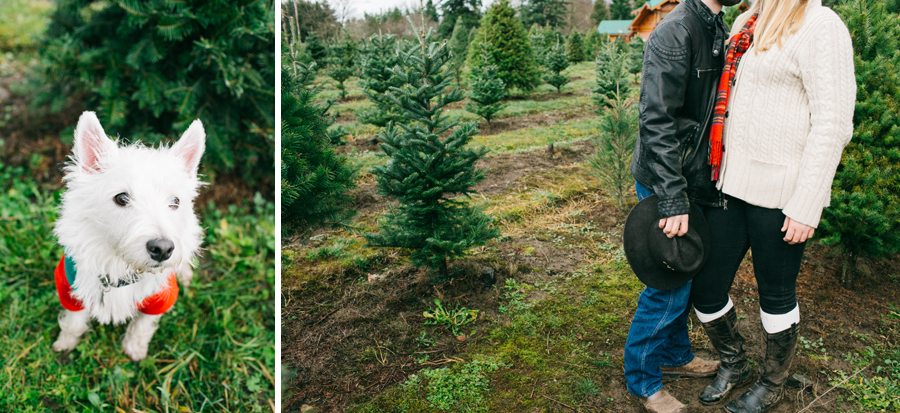 014-fullner-family-christmas-tree-farm-everson-washington-bellingham-family-photographer-katheryn-moran-photography.jpg