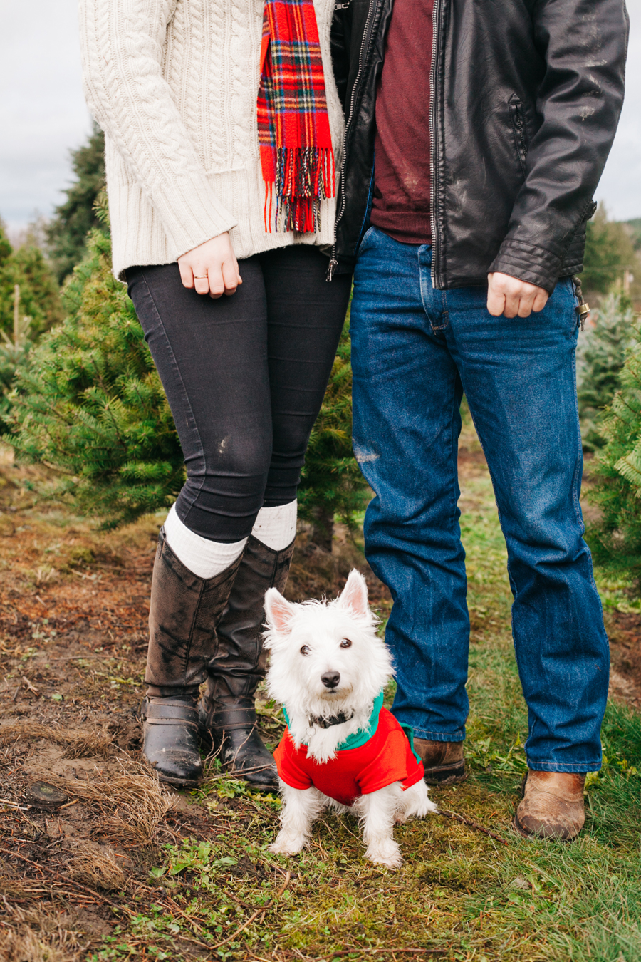 013-fullner-family-christmas-tree-farm-everson-washington-bellingham-family-photographer-katheryn-moran-photography.jpg